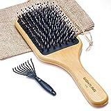 SIGHTLING Brosse à cheveux de soies de sanglier et bambou large...